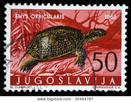 YUGOSLAVIA - CIRCA 1962: A stamp printed in Yugoslavia shows the European pond turtle with the inscription