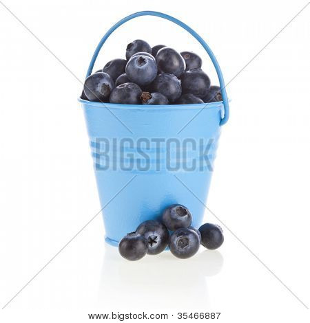 blueberry berries  in a color bucket isolated on white background