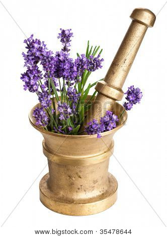 mortar with lavender isolated