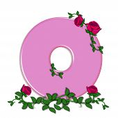 picture of climbing roses  - The letter O in the alphabet set Blushing Roses is soft pink - JPG