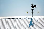 Rooster Weather Vane poster