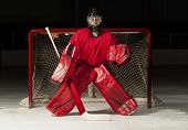 picture of hockey arena  - Ice hockey goalie in front of a goal net - JPG