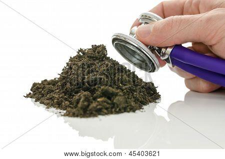 Infertile Soil