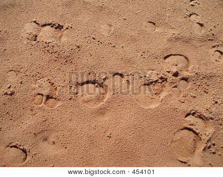 Trails On Sand
