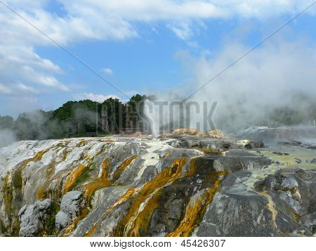 The Prince of Wales Feathers thermal spring erupting in Rotorua, New Zealand