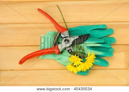 Secateurs with flower on wooden background