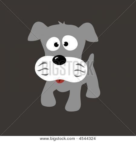 Schnauzer cachorro gris