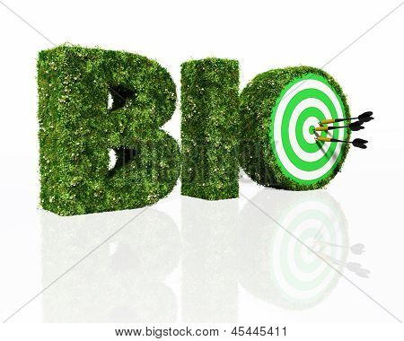 Bio Word Composed By Grass With A Dartboard And Darts