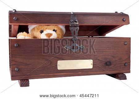 Bear In The Chest
