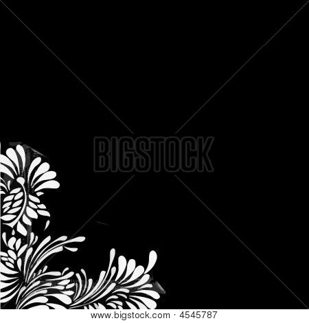 White Floral Pattern Black Background