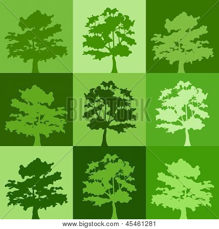 Green silhouettes of trees. Vector background.
