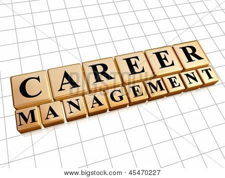 Career Management In Golden Cubes