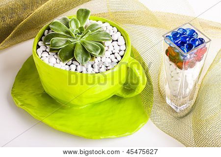 Table Decorations with colours