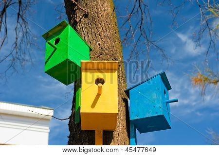 Three colorful birdhouse attached to a tree against the sky