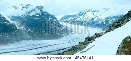 Great Aletsch Glacier (bettmerhorn, Switzerland) Panorama.