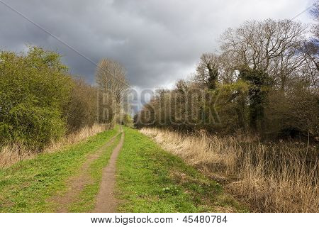 Country Walking Landscape