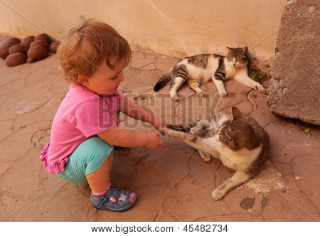 Girl teasing cat