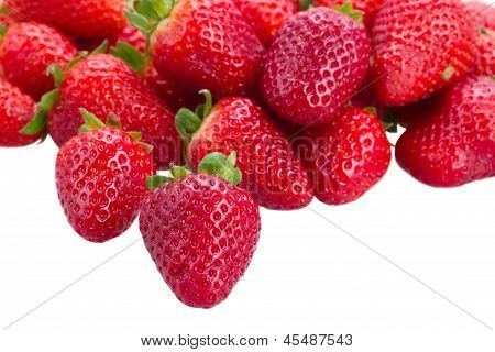 pile of strawberry border
