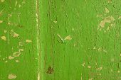 Background of old green painted wall
