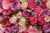 stock photo of purple rose  - Wedding flowers - JPG