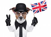 picture of bowler hat  - british dog with black bowler hat and black suit waving flag - JPG
