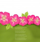 Green background with pink flowers.
