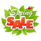 stock photo of water bug  - Spring Sale Poster With Gradient Mesh - JPG