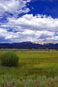 picture of colorado high country  - Colorado high grassland prairie with fluffy clouds and Rocky Mountains - JPG