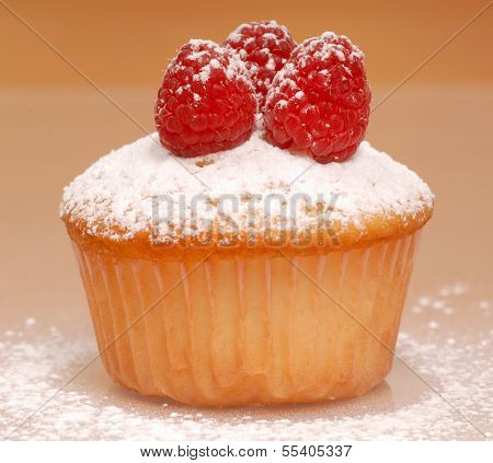 Freshly baked vanilla cupcake with raspberries and powdered sugar