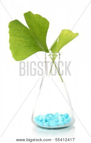 Ginkgo biloba leaves and pills in test tube, isolated on white