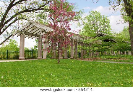 Arbor no Parque de quedas de Minnehaha