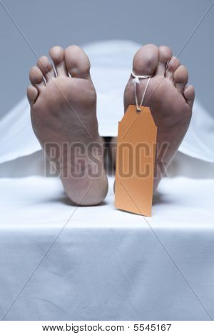 Labeled Feet Of A Dead Person In The Morgue