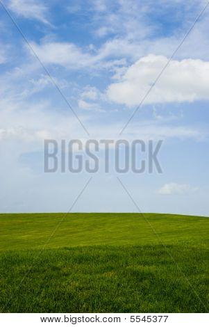 Campo gramado ideal
