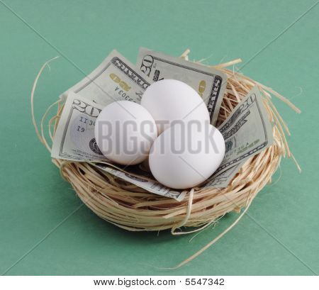 Nest with Money
