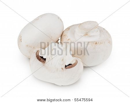 Button Mushrooms On White