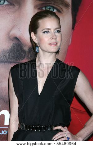 LOS ANGELES - DEC 12:  Amy Adams at the