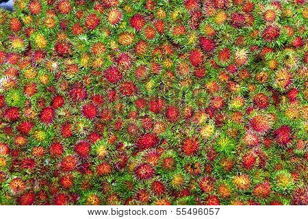 Sweet Fruits Rambutan Similar To Lychee