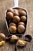 stock photo of filbert  - macadamia nuts on scoop on wooden table - JPG