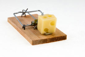 stock photo of mouse trap  - mouse trap with cheese - JPG