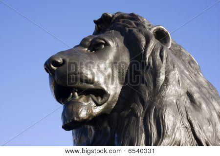 Trafalger Lion