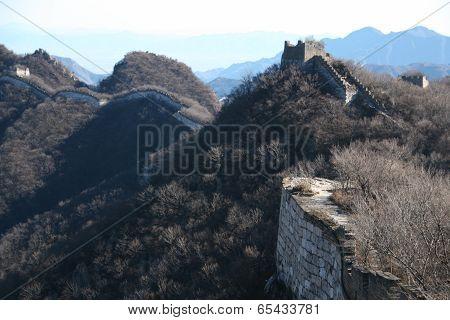 Rugged Wall