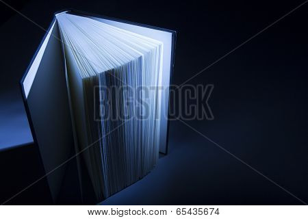 Book in Shadows