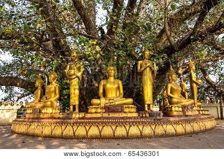 Buddha sculptures at Pha That Luang