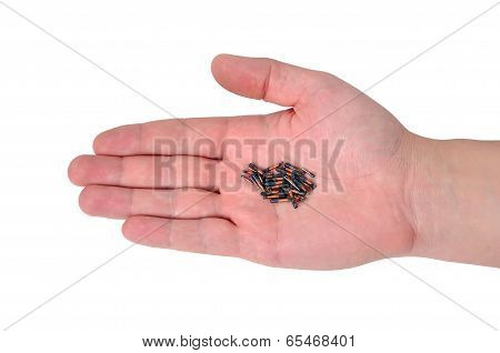 Hand Holding Id