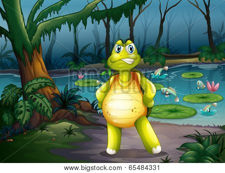 Illustration of a turtle inside the forest