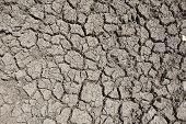 image of drought  - Photo of cracked earth - JPG