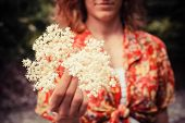picture of elderflower  - A young woman is holding a bunch of elderflowers she has been picking - JPG