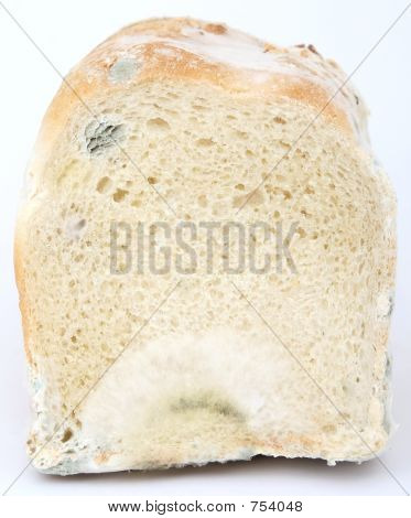 Loaf Of Mouldy Bread