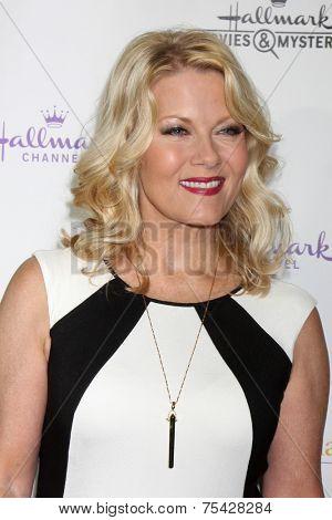 LOS ANGELES - NOV 4:  Barbara Niven at the Hallmark Channel's