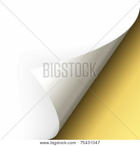 Paper - Bottom Corner - Gold